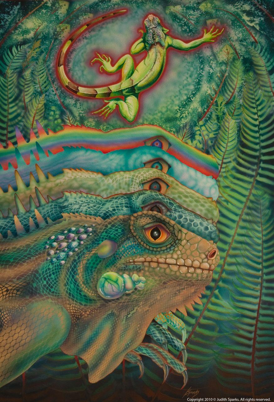Iguana Echo